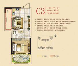 金湾·爱尚里==C3户型-一房一厅一卫