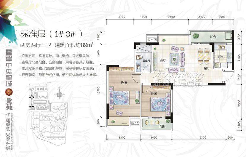 云星·中央星城==1#-3#户型-两房两厅一卫1