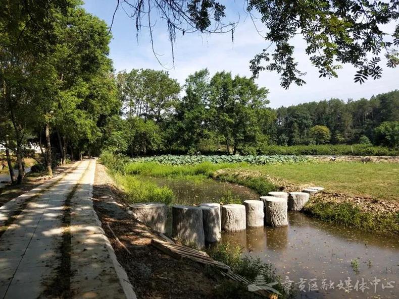 阳明康养生态园:力争早日建成并开园